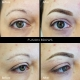 Fusion Brows:hair strokes and soft shading